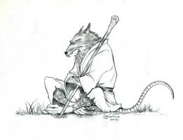 Master Splinter by Romax25