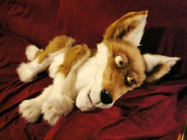 Coyote Puppet pic 2 by BlueHyena