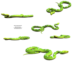 Bright Green Python Stock png by madetobeunique