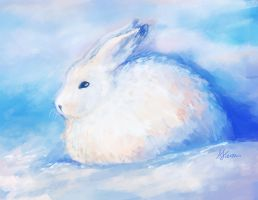 Snow Rabbit by adaneko
