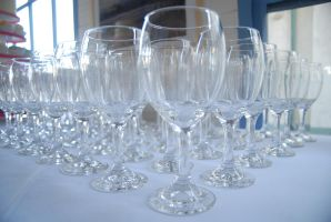 hfswineglasses by HoldFastStock