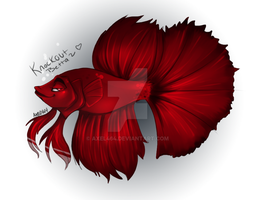 Knockout Betta by AXEL464