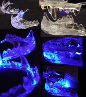 LED jawsets by Monoyasha