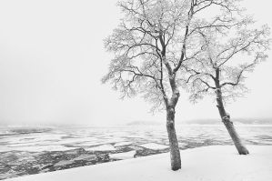 A freezing couple by eswendel