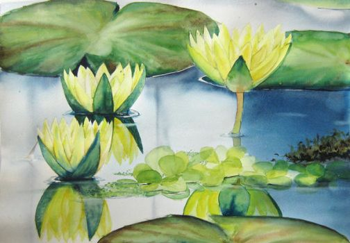 Waterlily by patriszkarch