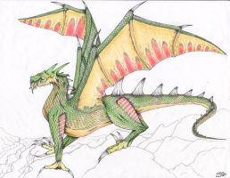 Emerald Dragon by chilledsashel