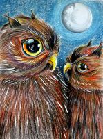 owls by PinkaArt