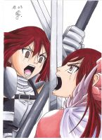 Erza VS Erza by YuukoScarlet