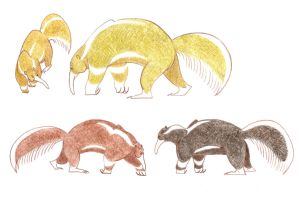 Giant Anteaters by Dead-Raccoons