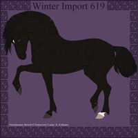 Winter Import 619 by ThatDenver