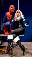 Spider Man Black Cat by Kryptoniano