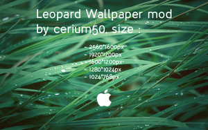 Leopard Wallpaper Mod by cerium50