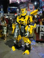 Rocking Bumblebee 3 by Shirozora