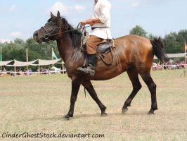 Hungarian Festival Stock 112 by CinderGhostStock