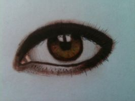 drawing eye by evelynsixx