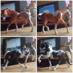 Breyer customs by Caterang8