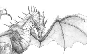 Skyrim dragon by Seigner