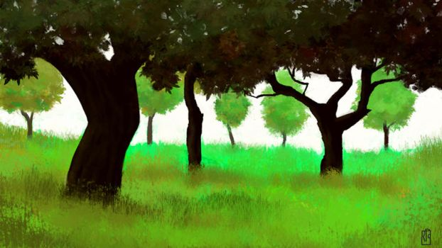 Wanderings: Trees by wowtheskyisblue