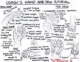 ::HAND AND PAW TUTORIAL:: by UsagiSasami