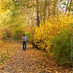 Walking in Autumn by Val-Faustino