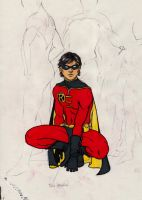 Robin_Tim Drake by gallygan