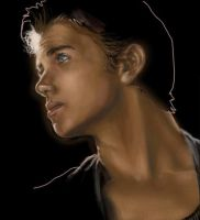 hayden christensen painting by cakes