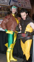Rogue and Wolverine by VoiceofSupergirl