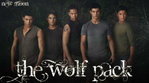 The Wolf Pack Wallpaper1 by TeamWerepire