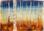 Birch forest by HedgehogMolly