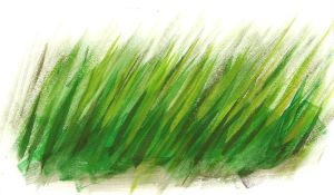 Grass by SamwiseTheAwesome