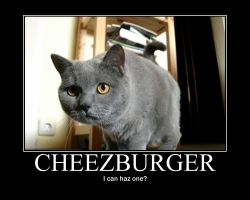 Cheezburger by pilwe