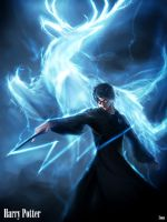 Harry Potter:Expecto Patronum by phamoz