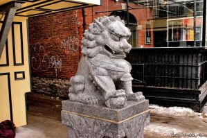 Lion Chinese Statue by danmoore