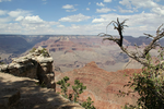The Grand Canyon by FeniX-Minerva