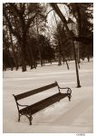 Park in winter II by SeiMissTake