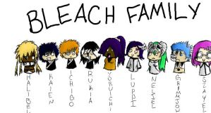 The Bleach Family by XxWtfxCourtneyxX