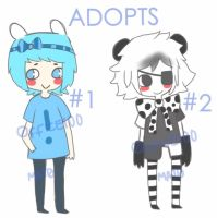 ADOPTS one by Office100