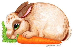Bunny and Carrot by XianJaguar