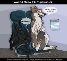 W and M 1 Turbulence Commish by Falcolf