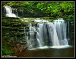 R.B. Ricketts Falls 2011 by Dracoart