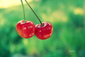Reasons why I love Summer. Cherries by LuizaLazar