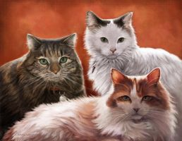 Three Cats Portrait by Nyrak
