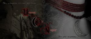 House of Night Banner 1 by Pure-Potential