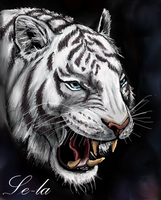 WhiteTiger by Le-laa