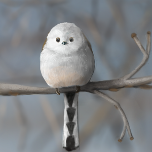 Puffball by Noctualis