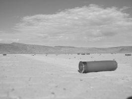 Shells in the desert by timlori