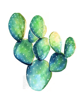 Cactus Watercolour by Simkaye