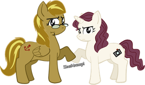 Bronies for Life by SarahRuthless