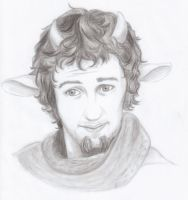 Mr. Tumnus by Paakil