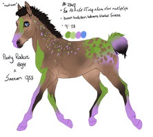 2347 Padro Foal Designed by Artoffreedom by HaloSon